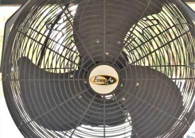 Fan Closeup